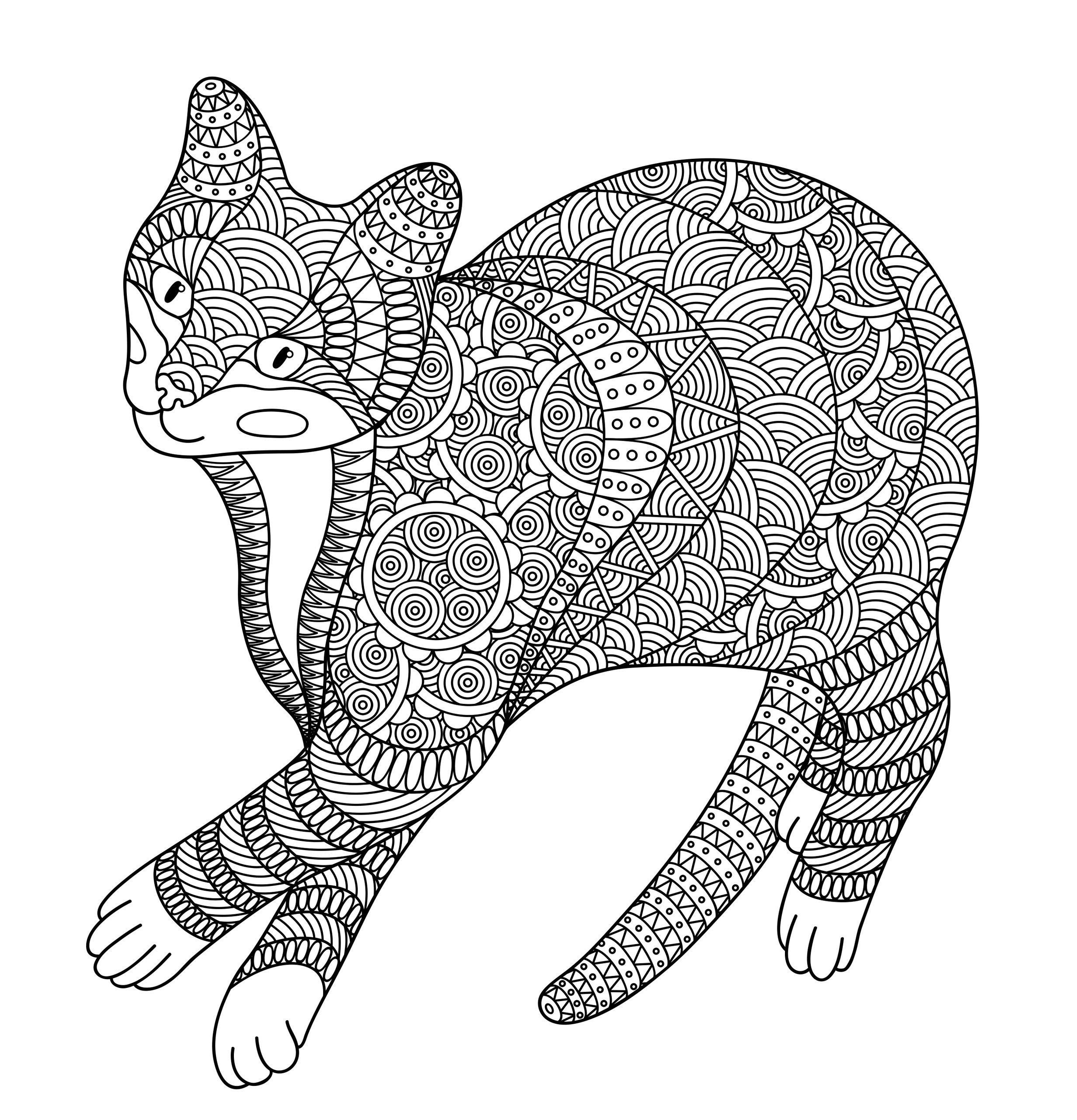 Картинки раскраски сложные кошка