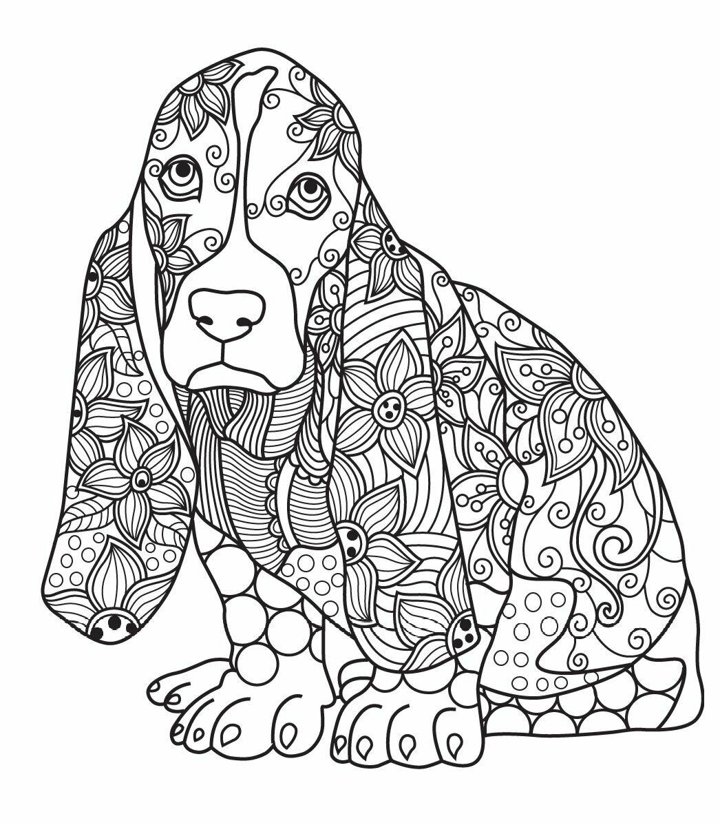 Антистресс картинки с животными