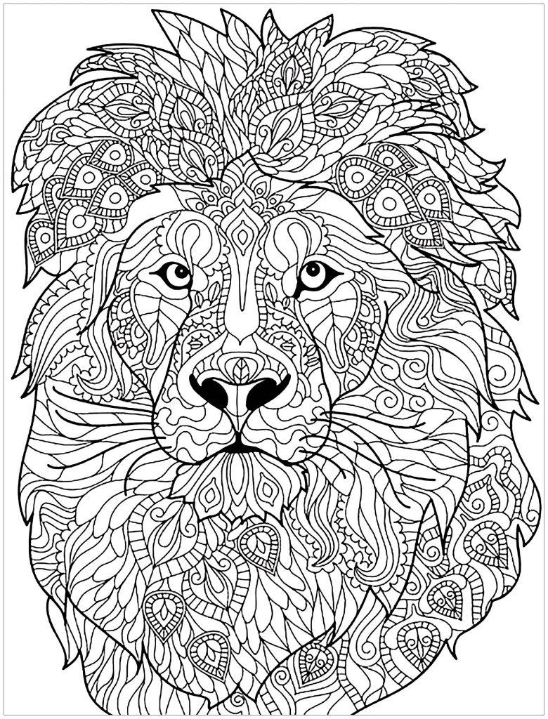 Бизон картинки разукрасить животного откликнулся запрос